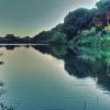 L'ultimo tratto del fiume Cecina
