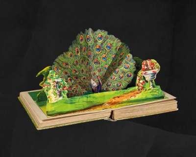 Mostra Pop-up, la magia dei libri