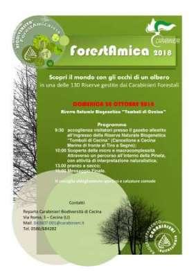 ForestAmica