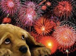 immagine fuochi d'artificio