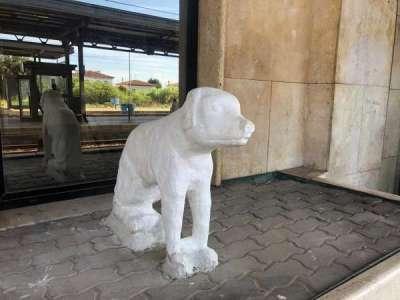 canina stazione
