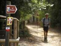 Cammino dalla via Francigena alla Costa degli Etruschi