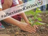 #alberiamocecina